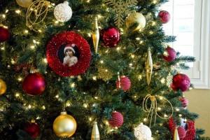 christmas-tree-decoration4