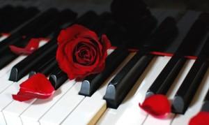 57200__piano-rose_p